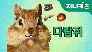 나무타기 선수, 다람쥐(squirrel) | 겨울잠 |…