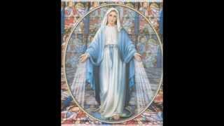 Phim Viet Nam | Thánh ca đạo thiên chúa giáo về Đức Mẹ Maria | Thanh ca dao thien chua giao ve Duc Me Maria