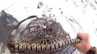 Охота на ондатру мордами, проверка и результат