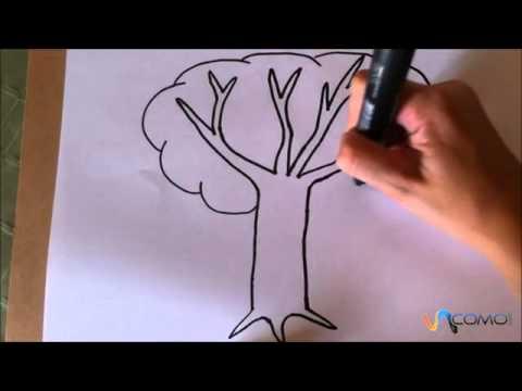 Worksheet. Dibujar un rbol animado  YouTube