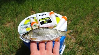 Fishing for Bass with LIVE Bait!! (Florida shiners)