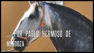 """""""Lebrijano"""", Yeguada de Pablo Hermoso de Mendoza (2) - José Antonio Ruiz Dosantos"""