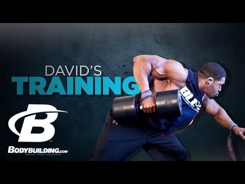 David Otunga's Training & Fitness Program  Bodybuilding.com
