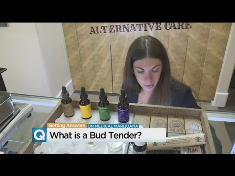Getting Answers: What Is A Bud Tender?