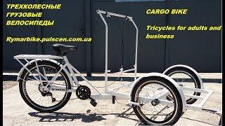 Велосипед для уличной торговли едой и напитками. Велокофейня, велорикша, cargo bike, tricycle