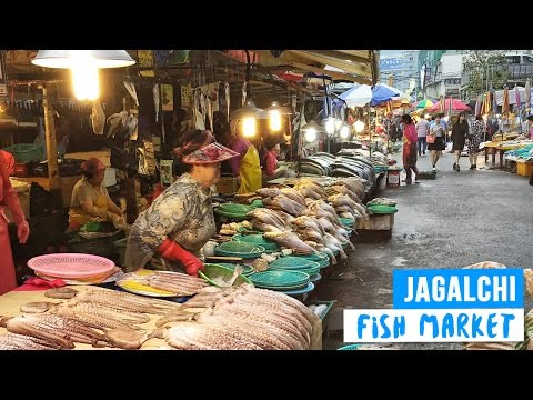 Jagalchi Shijang: Famous Fish Market in Busan, South Korea