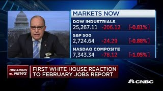 Larry Kudlow: February jobs number is very 'fluky'