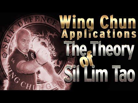 Η θεωρία του Sil Lim Tao   Wing Chun Application   Πολεμικές Τέχνες #SifuChrisVafiadis from YouTube · Duration:  4 minutes 7 seconds