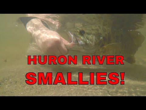 HURON RIVER Fishing For SMALLMOUTH BASS!