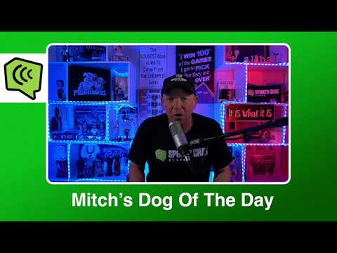 Mitch's Dog of the Day 2:27:21: Free NBA Basketball Pick NBA Picks, Predictions and Betting Tip