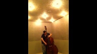 BOTTESINI OBLIGATO PIRASTRO String. Damián Rubido González, bass. Follow the links for more strings