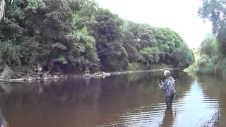 Franco Loses a Big Fish at Carrig - River Blackwater - 23 August 2013