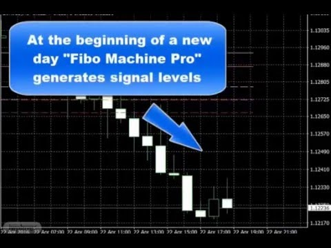 Fibo forex review