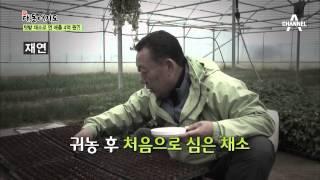 [시골애산다] 아내가 남긴 채소 꾸러미로 연 매출 3억 원?_채널A_신대동여지도 84회