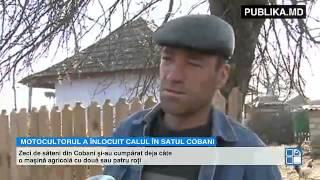 Repeat youtube video A înlocuit căruţa şi tractorul! Vehiculul minune utilizat tot mai des de fermierii din Moldova