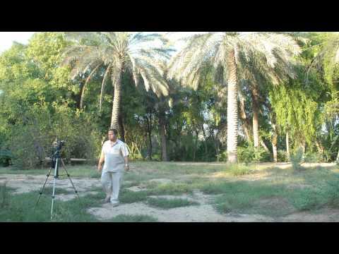 Al Wabra Wildlife Preservation (AWWP)