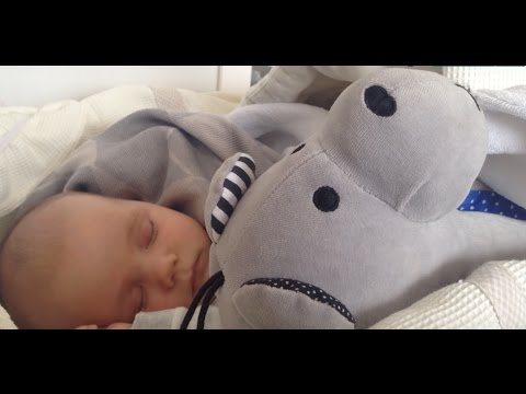 Whisbear The Humming Bear - helps your baby fall asleep