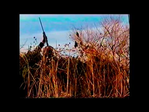 Arkansas River Crow Shoot Nov 2000