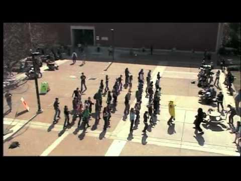 Cupid Shuffle Flash Mob