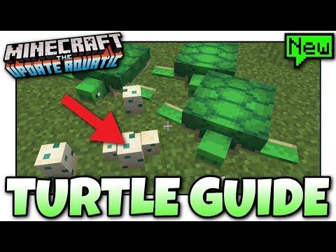 Minecraft - ADVANCED TURTLE GUIDE [ Tutorial ] MCPE / Xbox / Bedrock / Java