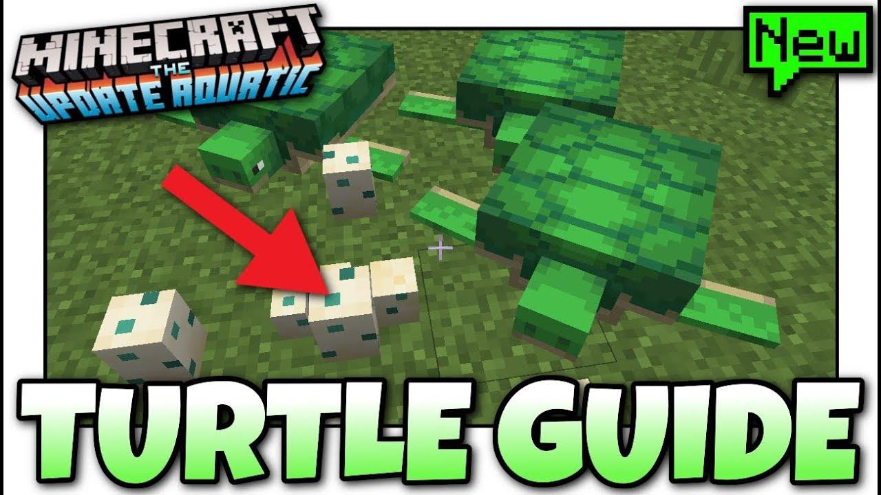 Minecraft Advanced Turtle Guide Tutorial Mcpe Xbox Bedrock