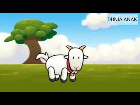 lagu-anak-(-anak-kambing-saya-)