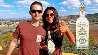 Tequila, Mexico's BEST KEPT SECRET?- La Fortaleza Distillery 🥃
