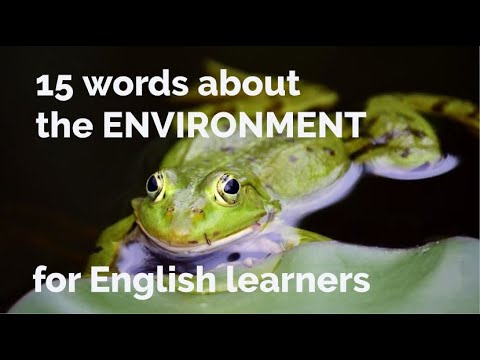 15 Words - About the Environment