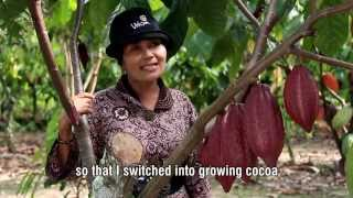 Astuty - SCPP Cocoa Farmer Success Story