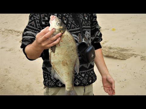 Рыбалка в Астраханской области. Как местные ловят сазана и леща.