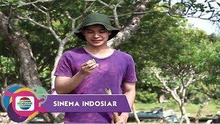 Sinema Indosiar - Suamiku Penjaga Makam Berhati Mulia