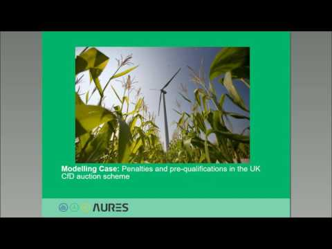 Auctions for Renewable Energy – Model based Analysis