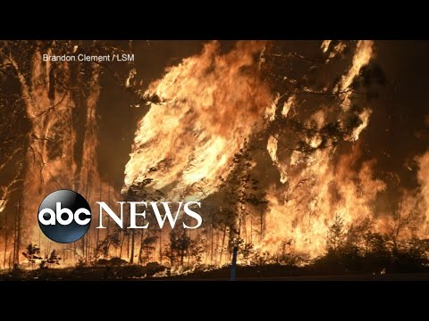 Winds push massive wildfires across western states  WNT