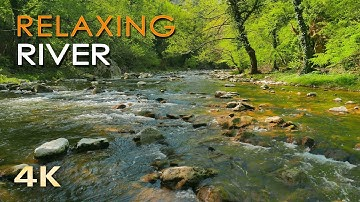 4K Relaxing River - Ultra HD Nature Video -  Water Stream & Birdsong Sounds - Sleep/Study/Meditate