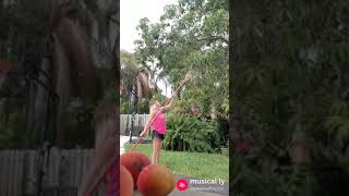 Picking mangoes from our backyard trees!