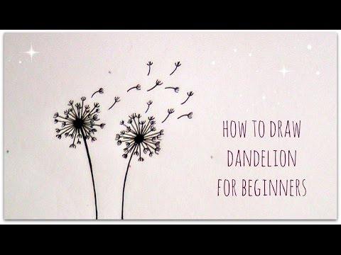 How To Draw Dandelion Easy Version For Beginners YouTube