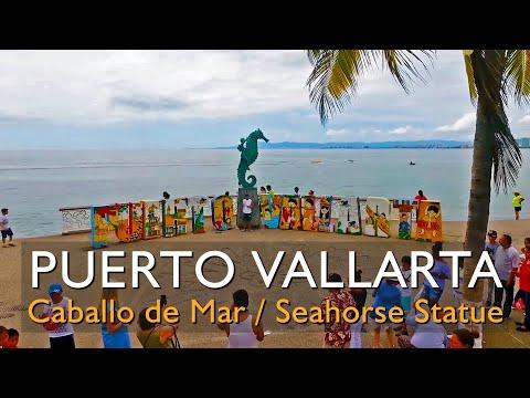 Escultura del Caballito de Mar / Seahorse Statue Malecon Puerto Vallarta