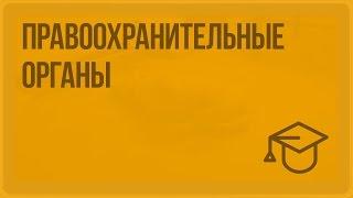 Правоохранительные органы. Видеоурок по обществознанию 9 класс