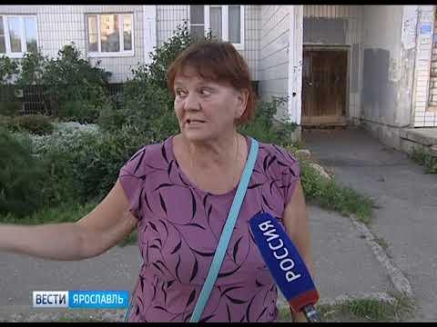 Жители Фрунзенского района Ярославля своими силами отремонтировали дорогу