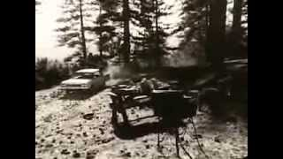 VINTAGE EARLY 60s AMC RAMBLER REBEL COMMERCIAL - A FOREST RANGER & A BEAR (IT ISN