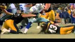 Pittsburgh Steelers-Renegade