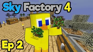 DIVING into Sky Factory 4 Hype !!! (Uncut 2 Hour Special