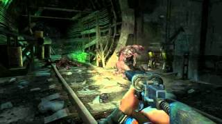 Metro 2033 - La danse du Nosalis