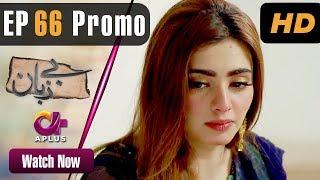 Pakistani Drama  Bezuban  Episode 66 Promo  Aplus Dramas  Usama Khan Nawal Saeed Junaid