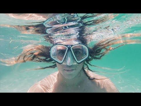 Underwater Paradise Vlog!