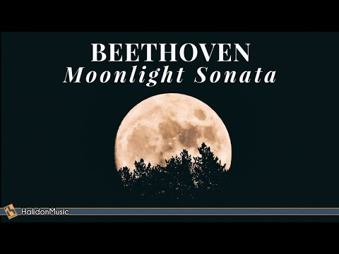 Beethoven - Moonlight Sonata | 2 Hours Classical Piano Music for Relaxation
