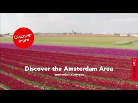 Amsterdam Area - Flowers of Amsterdam