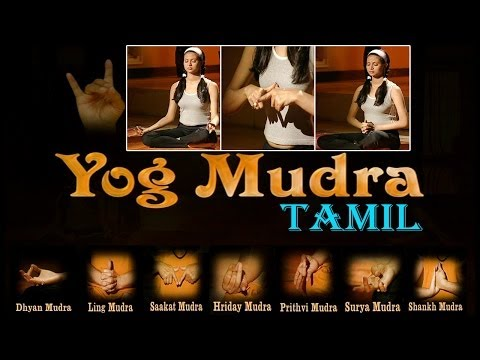 Yog Mudra - Your Yoga Gym - Tamil