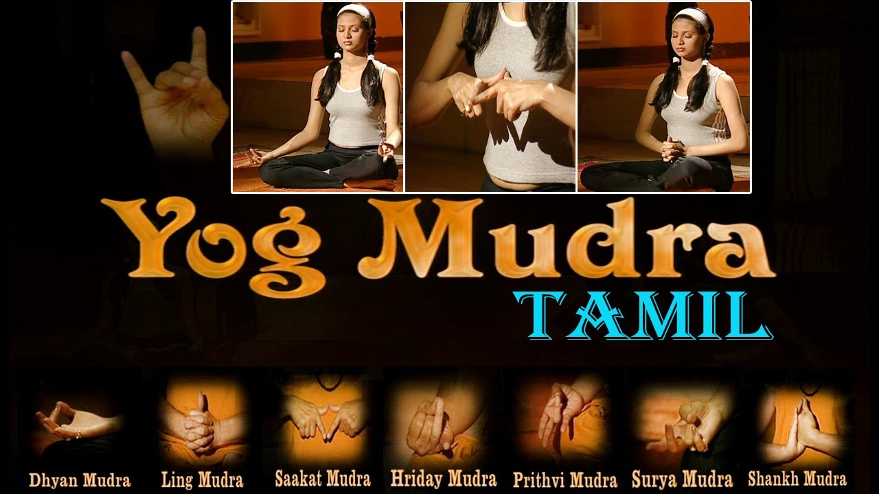 yog mudra your yoga gym tamil youtube
