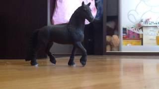 Лошади и наездницы
